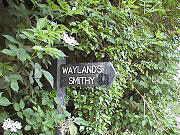 SignWayland